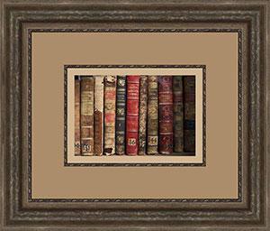 Framed Image of Books